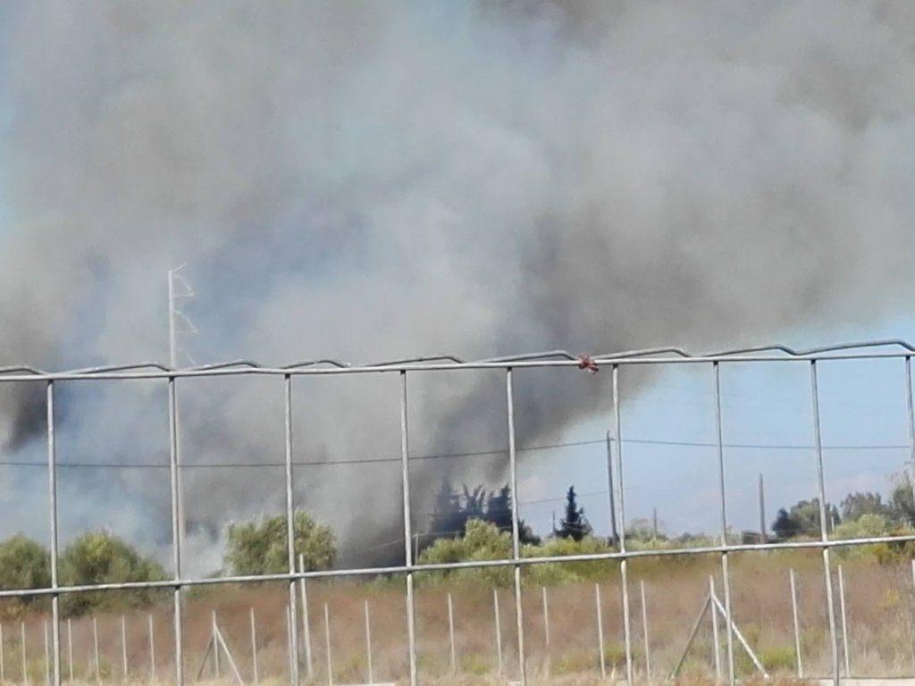 Πρέβεζα: Εξαιτίας μηχανήματος του δήμου, η φωτιά που έκαψε περιουσίες δημοτών;