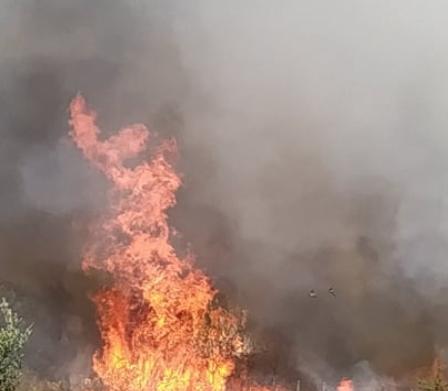 Πρέβεζα: Και εναέρια μέσα στην κατάσβεση της πυρκαγιάς στη Νικόπολη